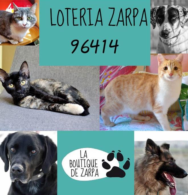 Lotería Zarpa